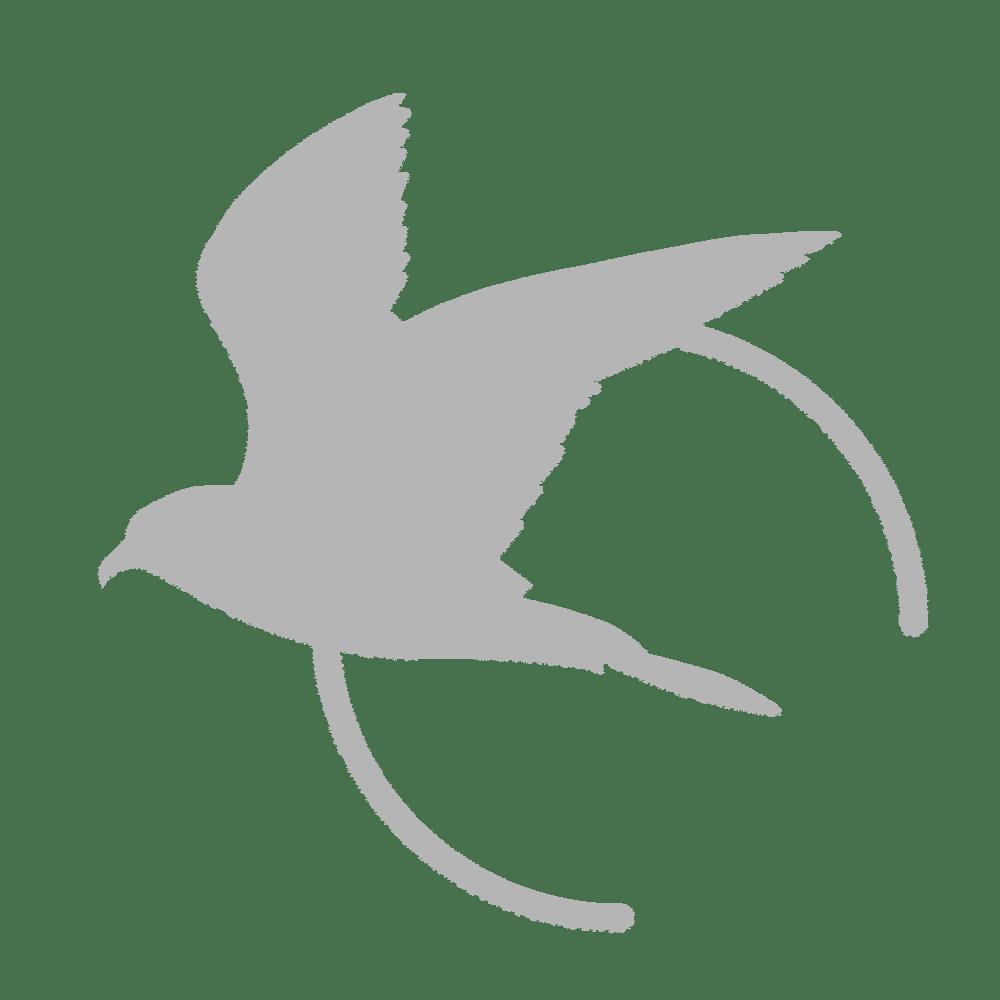 logo de Aube